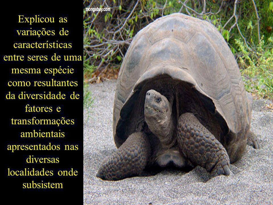 Explicou as variações de características entre seres de uma mesma espécie como resultantes da diversidade de fatores e transformações ambientais apresentados nas diversas localidades onde subsistem
