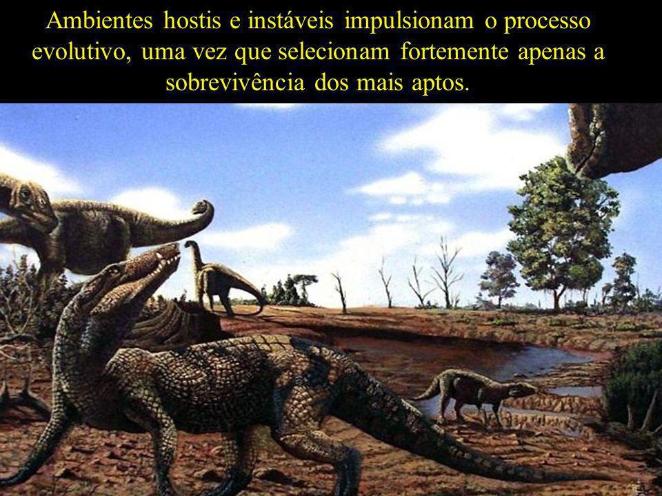 Ambientes hostis e instáveis impulsionam o processo evolutivo, uma vez que selecionam fortemente apenas a sobrevivência dos mais aptos.