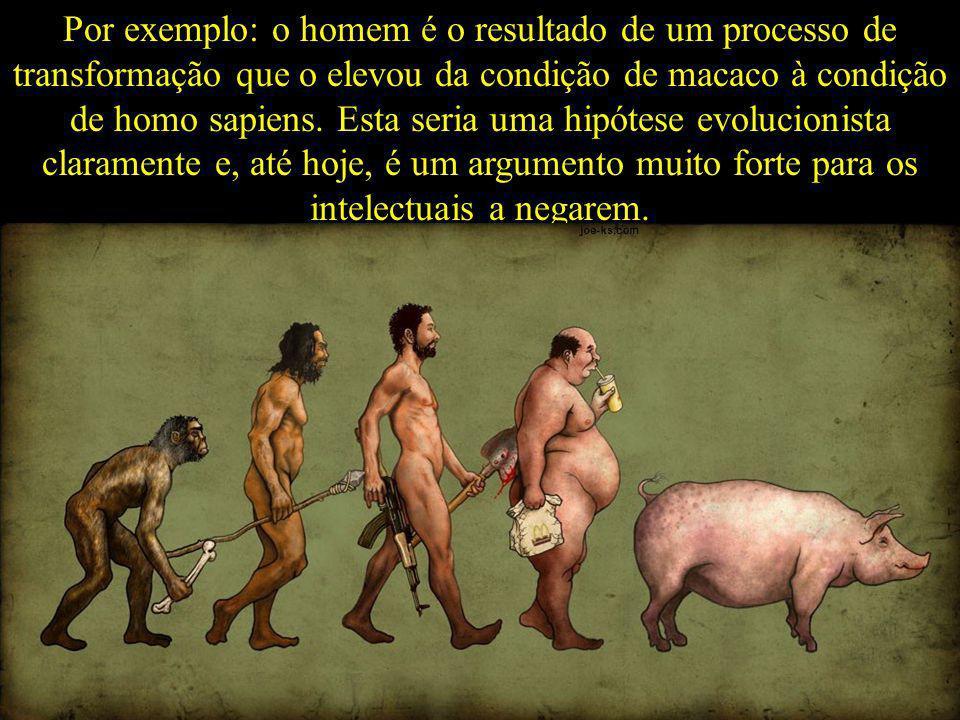 Por exemplo: o homem é o resultado de um processo de transformação que o elevou da condição de macaco à condição de homo sapiens.