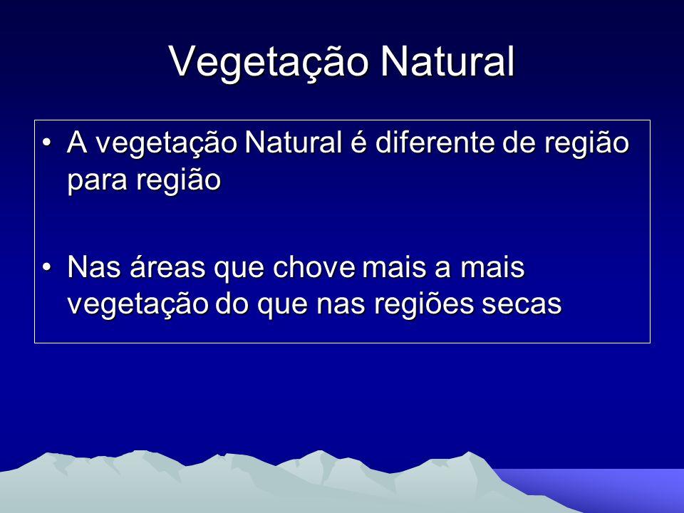 Vegetação Natural A vegetação Natural é diferente de região para região.