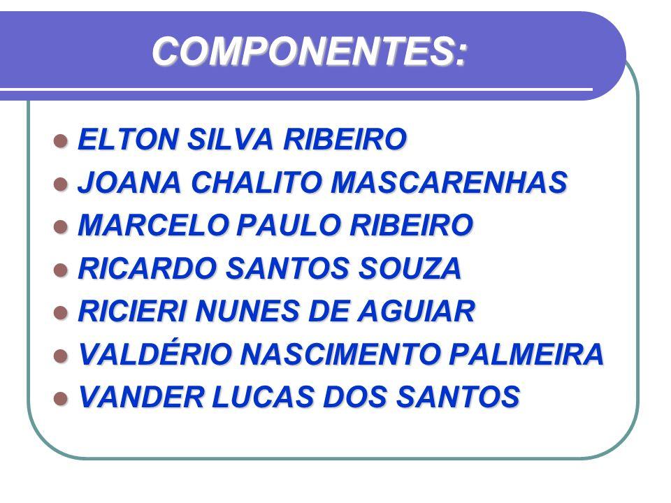 COMPONENTES: ELTON SILVA RIBEIRO JOANA CHALITO MASCARENHAS