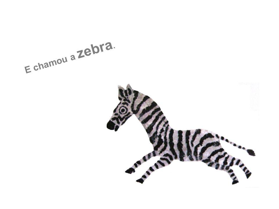 E chamou a zebra.