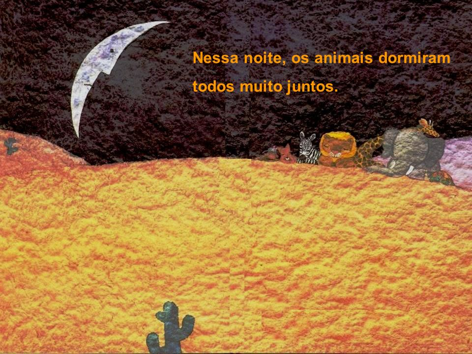 Nessa noite, os animais dormiram todos muito juntos.