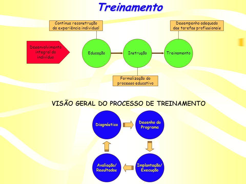VISÃO GERAL DO PROCESSO DE TREINAMENTO