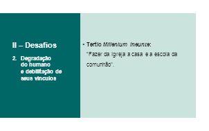 II – Desafios Tertio Millenium Ineunte: