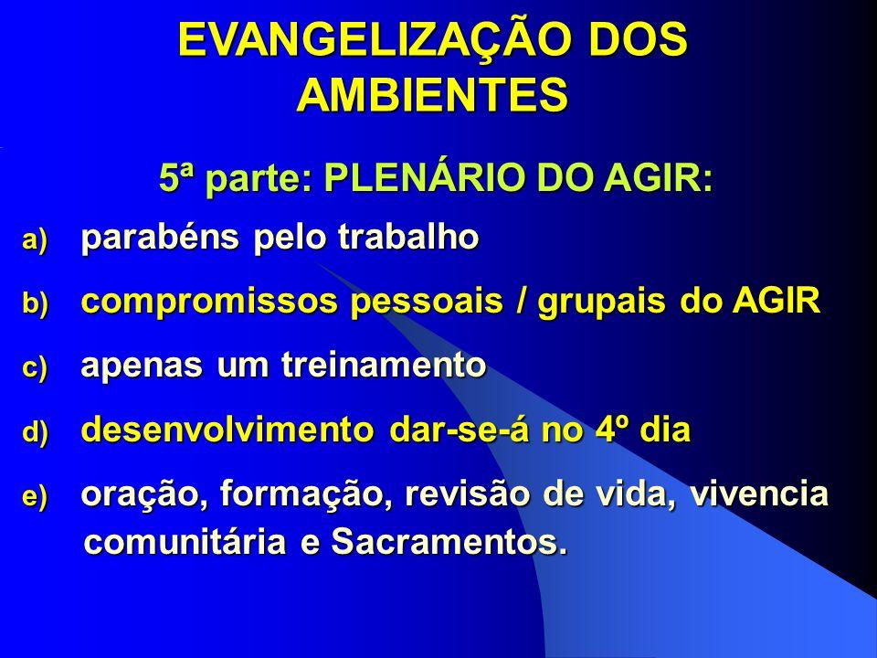 EVANGELIZAÇÃO DOS AMBIENTES 5ª parte: PLENÁRIO DO AGIR: