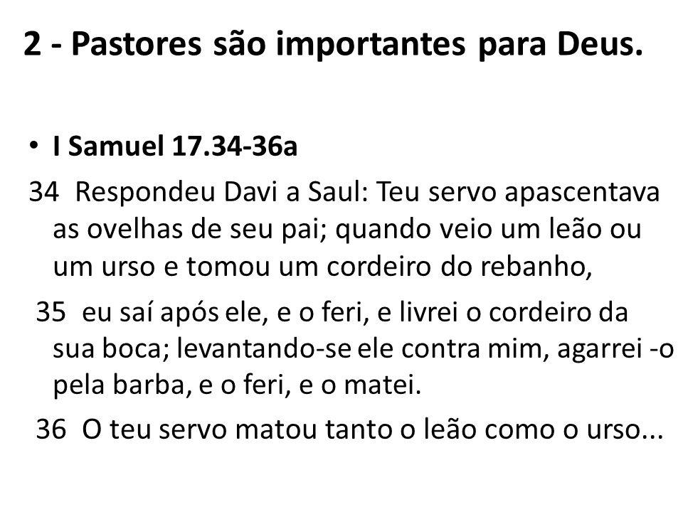 2 - Pastores são importantes para Deus.