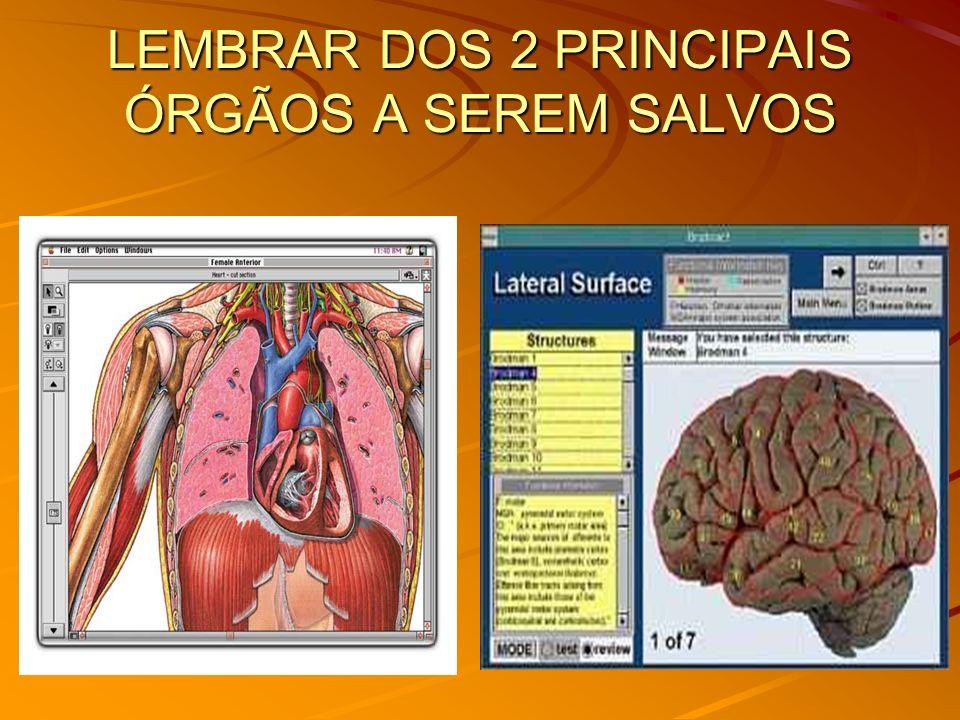 LEMBRAR DOS 2 PRINCIPAIS ÓRGÃOS A SEREM SALVOS