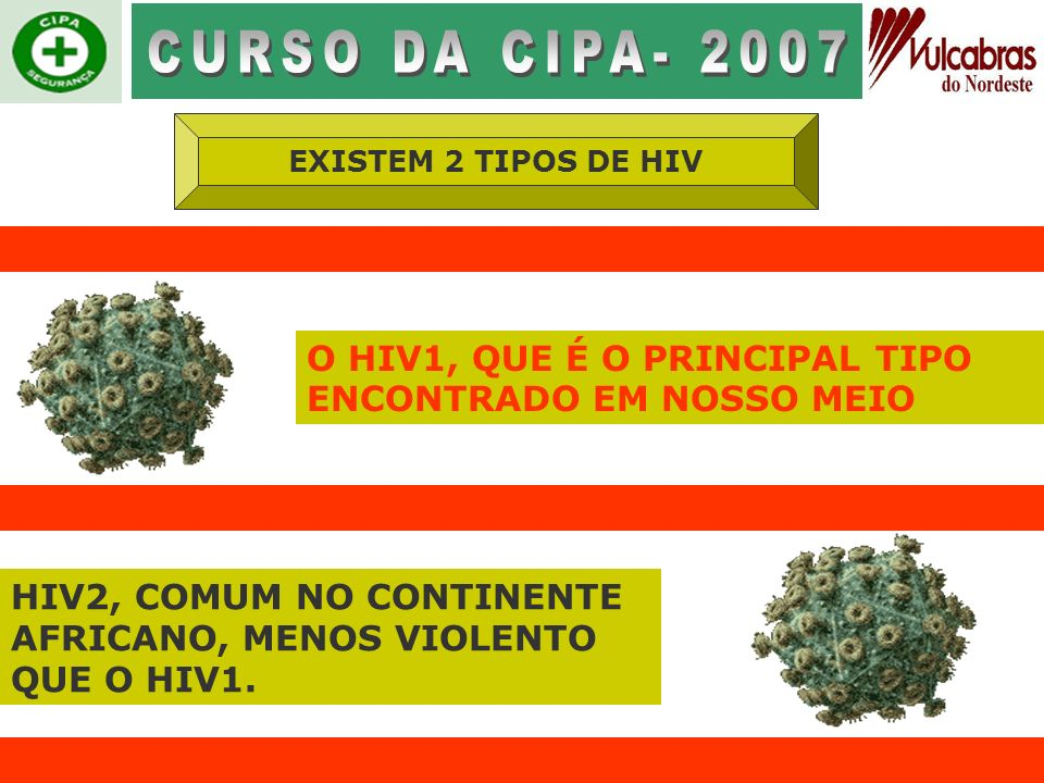 CURSO DA CIPA- 2007EXISTEM 2 TIPOS DE HIV. O HIV1, QUE É O PRINCIPAL TIPO ENCONTRADO EM NOSSO MEIO.