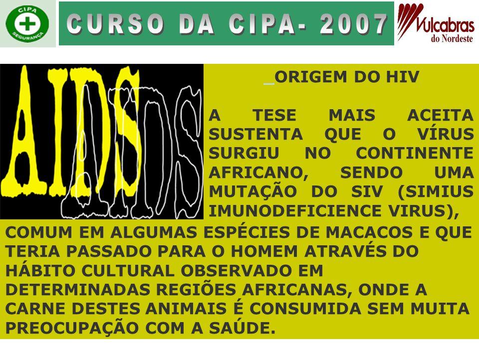 CURSO DA CIPA- 2007 ORIGEM DO HIV