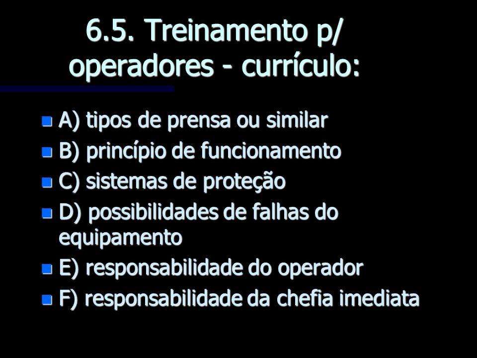 6.5. Treinamento p/ operadores - currículo:
