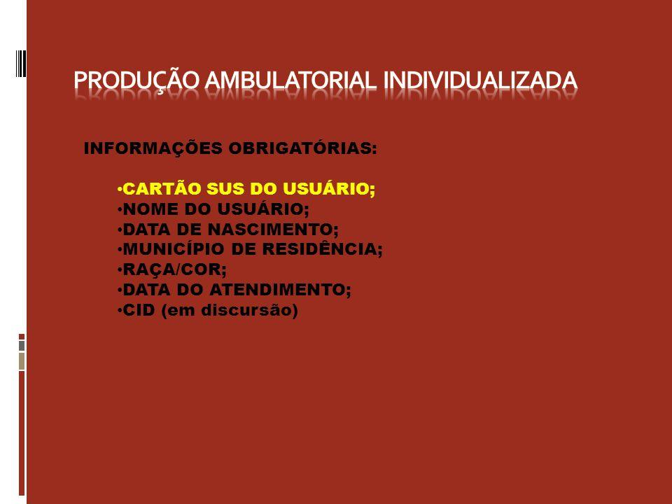 PRODUÇÃO AMBULATORIAL INDIVIDUALIZADA