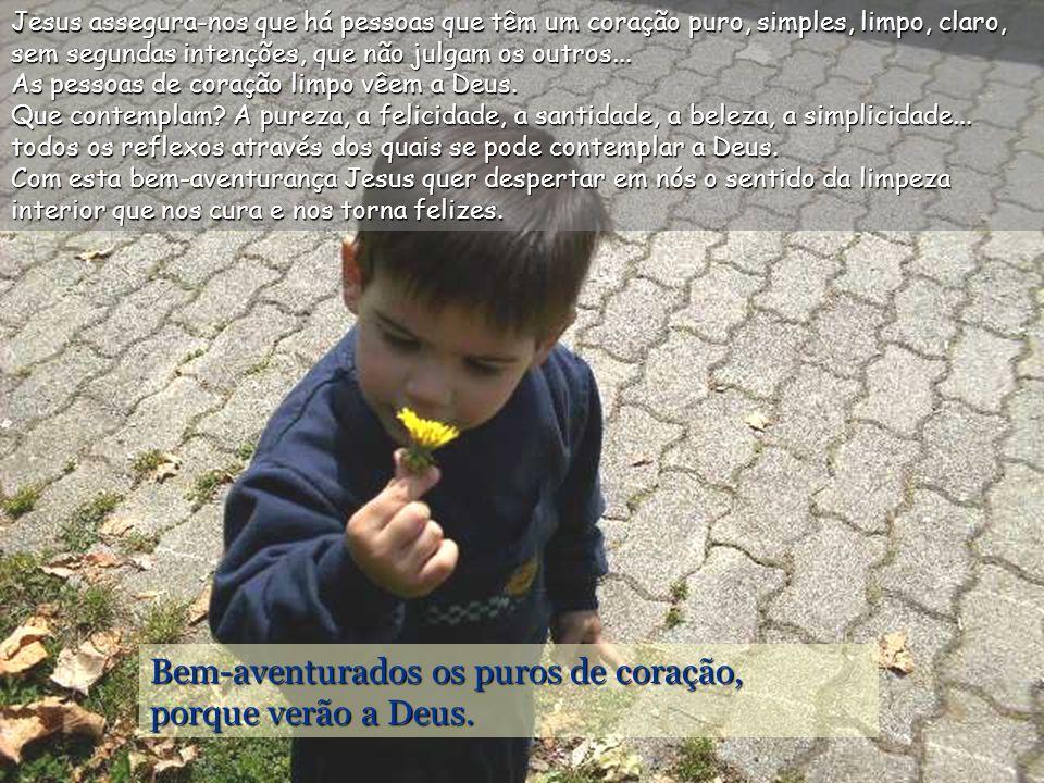 Bem-aventurados os puros de coração, porque verão a Deus.