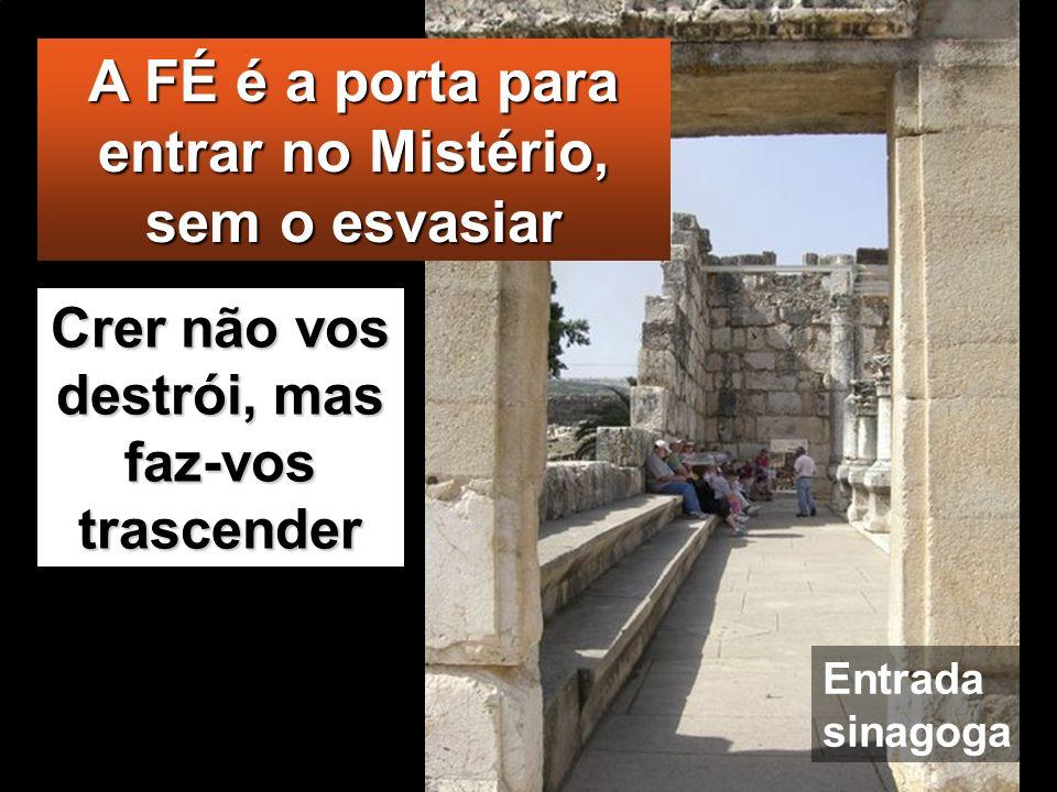 A FÉ é a porta para entrar no Mistério, sem o esvasiar
