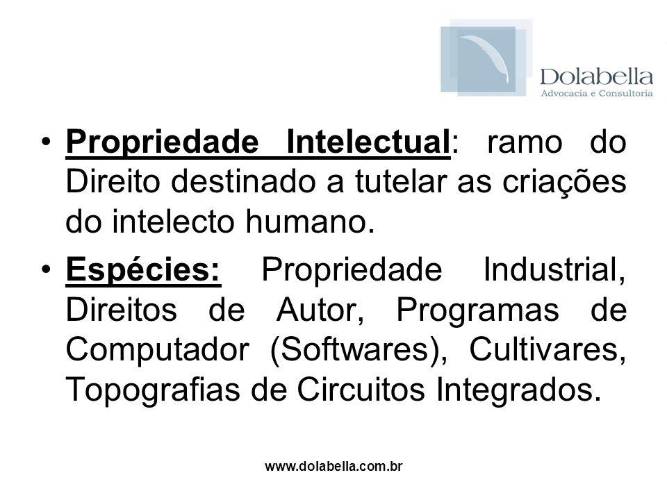 Propriedade Intelectual: ramo do Direito destinado a tutelar as criações do intelecto humano.