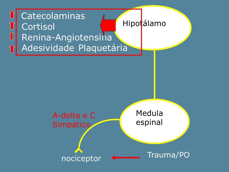 Adesividade Plaquetária