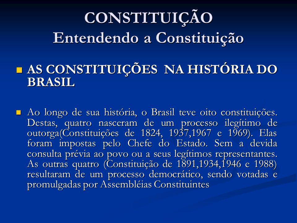 CONSTITUIÇÃO Entendendo a Constituição