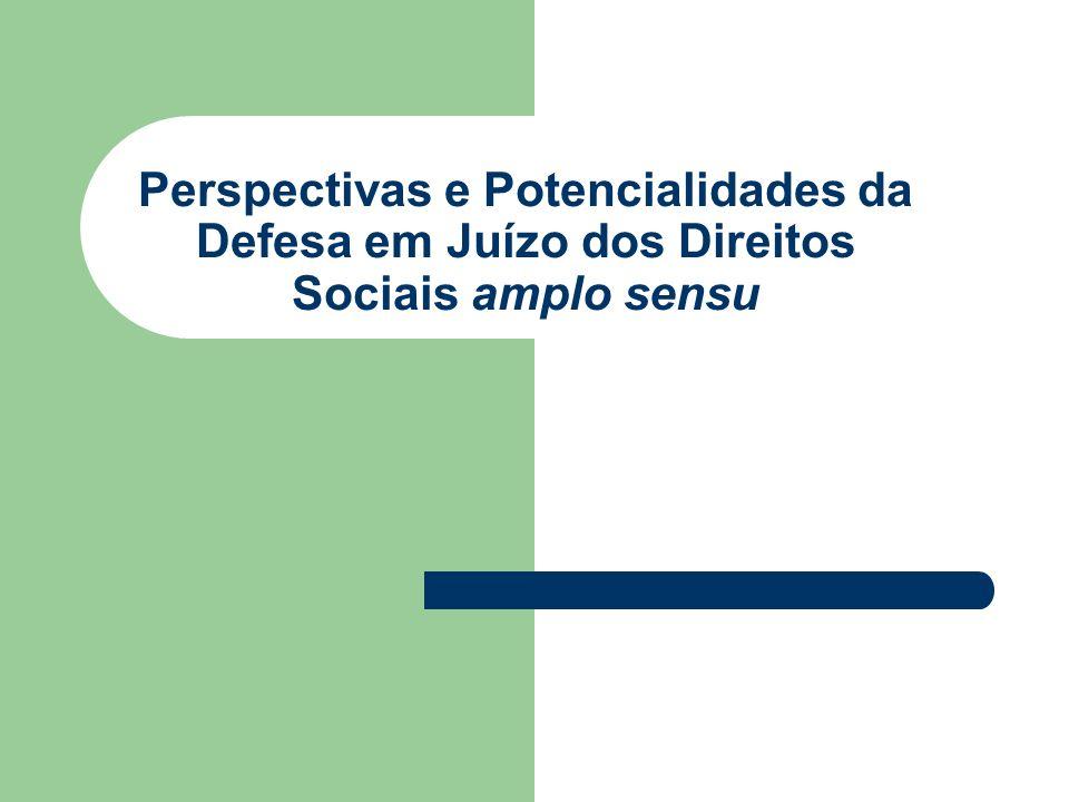 Perspectivas e Potencialidades da Defesa em Juízo dos Direitos Sociais amplo sensu