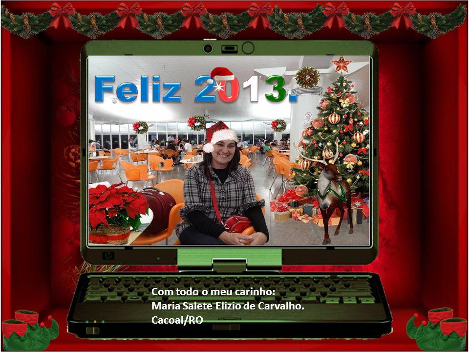 Feliz 2013. Com todo o meu carinho: Maria Salete Elizio de Carvalho.