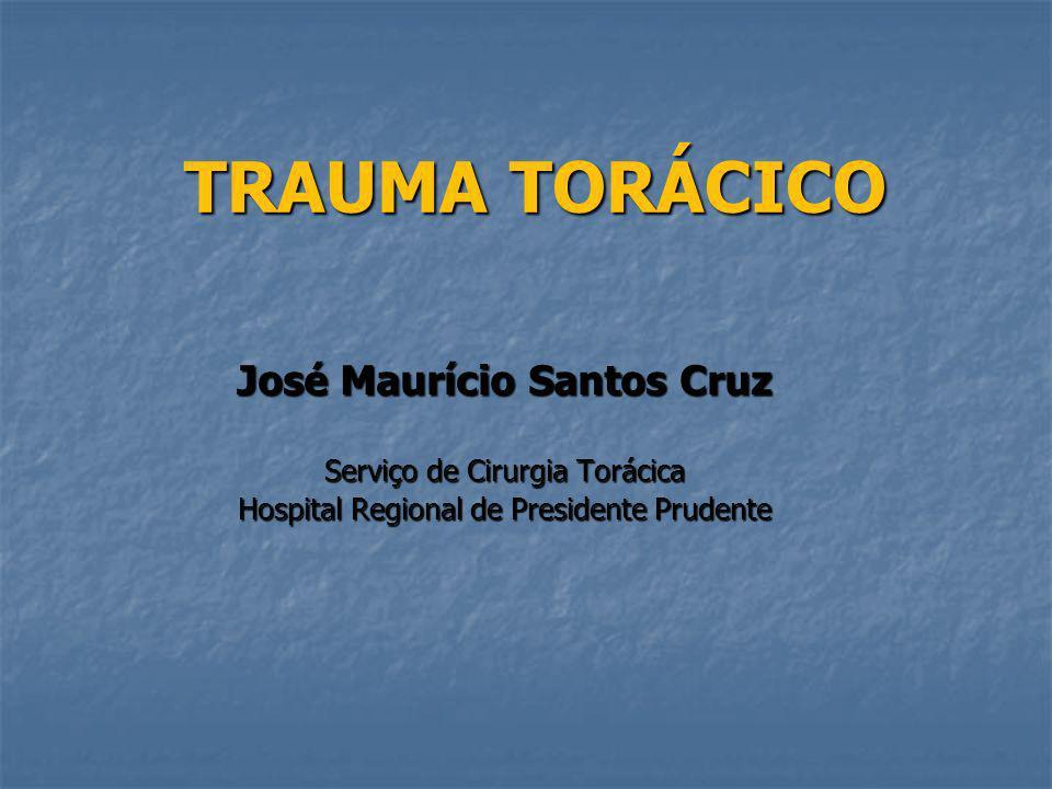 José Maurício Santos Cruz