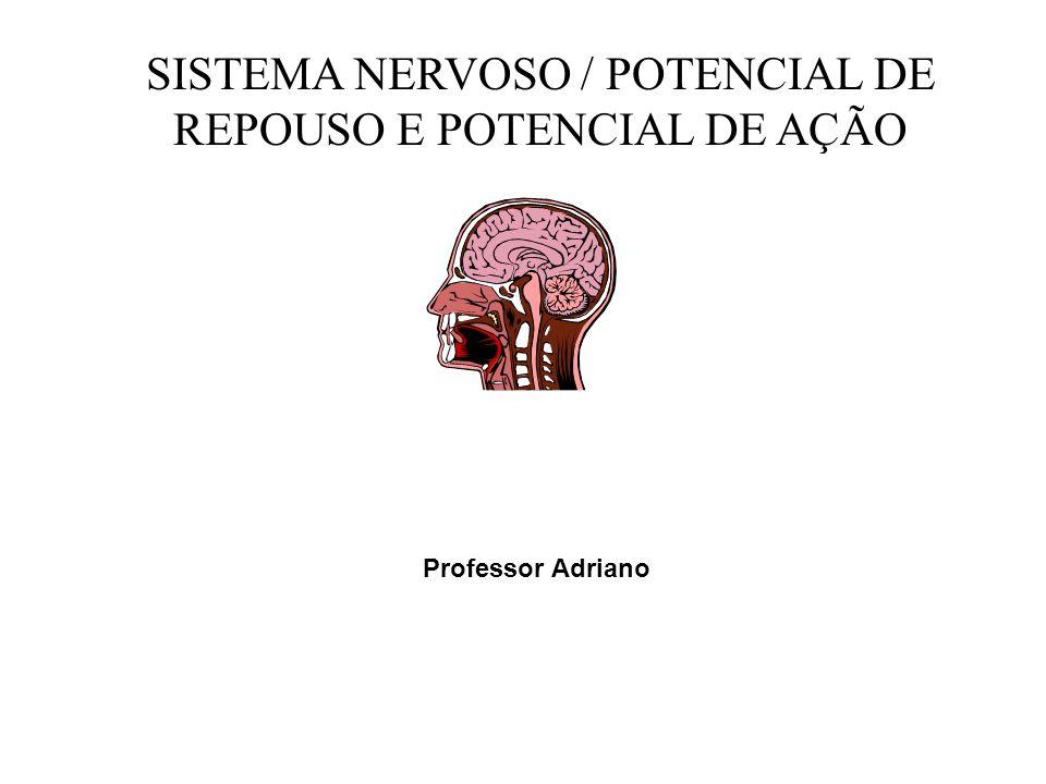SISTEMA NERVOSO / POTENCIAL DE REPOUSO E POTENCIAL DE AÇÃO