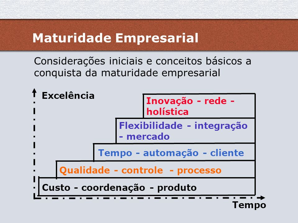 Maturidade Empresarial