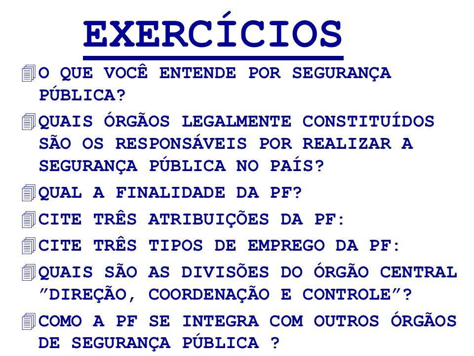 EXERCÍCIOS O QUE VOCÊ ENTENDE POR SEGURANÇA PÚBLICA