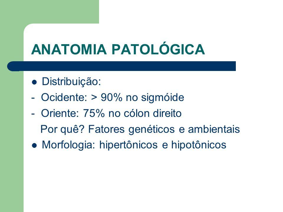 ANATOMIA PATOLÓGICA Distribuição: - Ocidente: > 90% no sigmóide