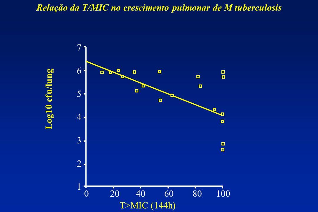 Relação da T/MIC no crescimento pulmonar de M tuberculosis
