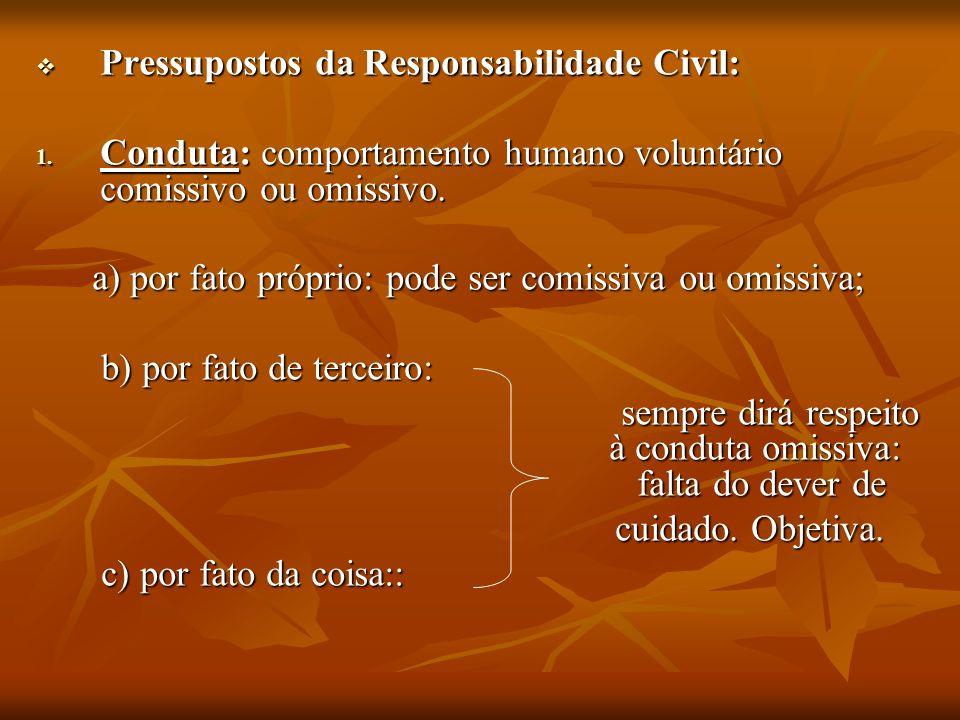 Pressupostos da Responsabilidade Civil: