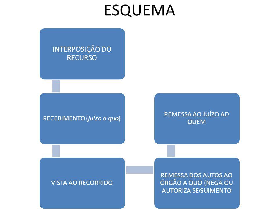 ESQUEMA INTERPOSIÇÃO DO RECURSO RECEBIMENTO (juízo a quo)