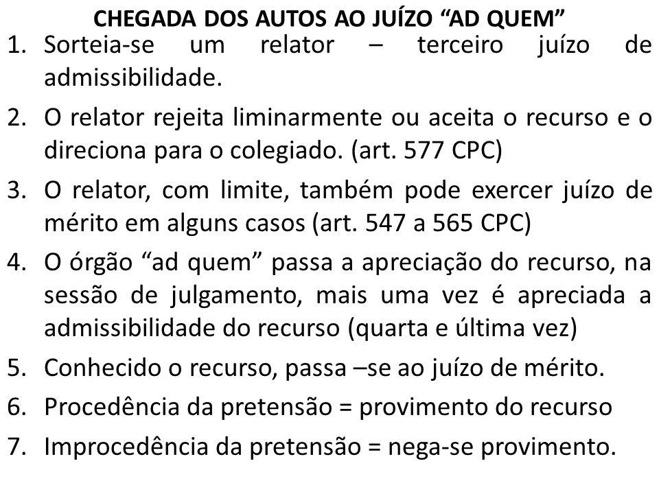 CHEGADA DOS AUTOS AO JUÍZO AD QUEM