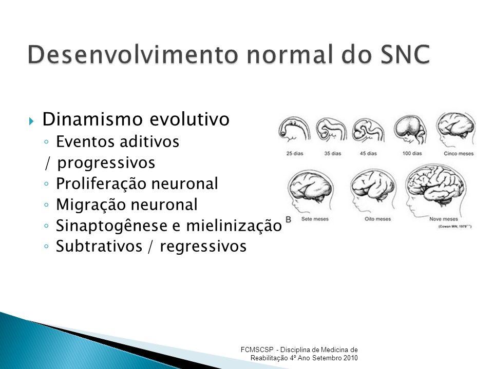 Desenvolvimento normal do SNC