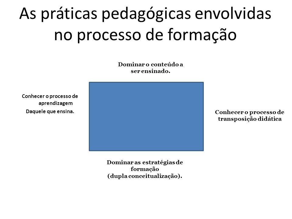 As práticas pedagógicas envolvidas no processo de formação