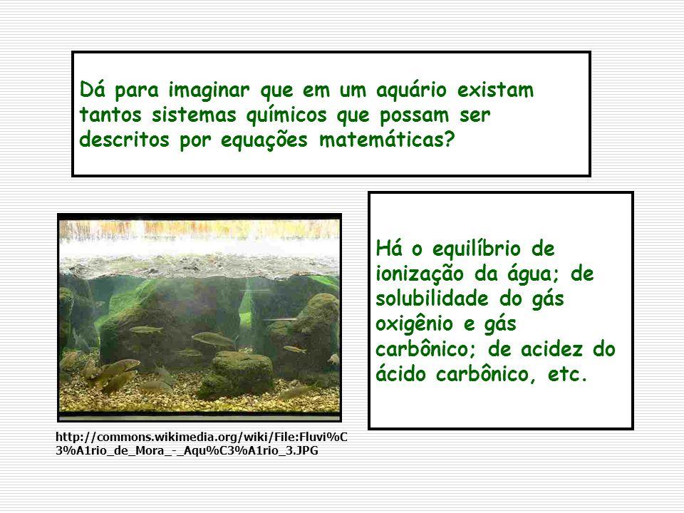 Dá para imaginar que em um aquário existam tantos sistemas químicos que possam ser descritos por equações matemáticas