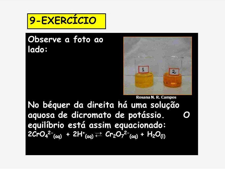 9-EXERCÍCIO Observe a foto ao lado: