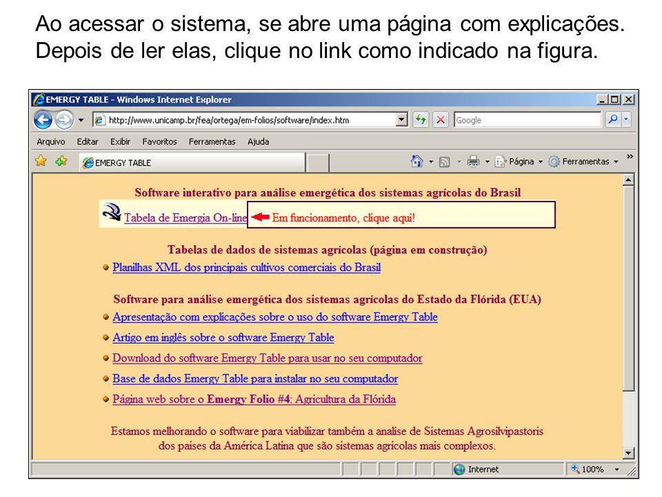 Ao acessar o sistema, se abre uma página com explicações