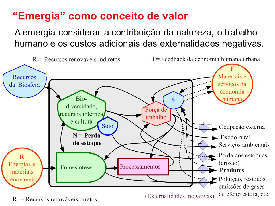 Emergia como conceito de valor