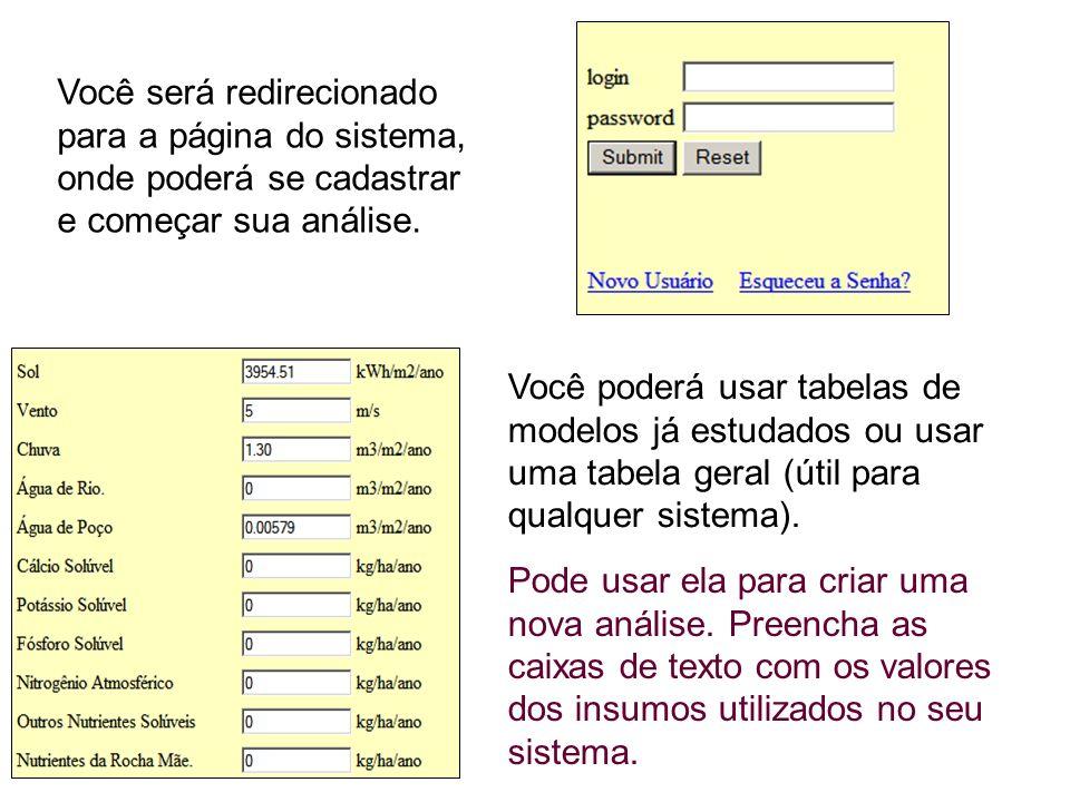 Você será redirecionado para a página do sistema, onde poderá se cadastrar e começar sua análise.