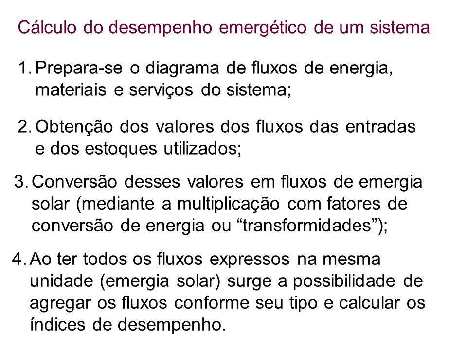 Cálculo do desempenho emergético de um sistema