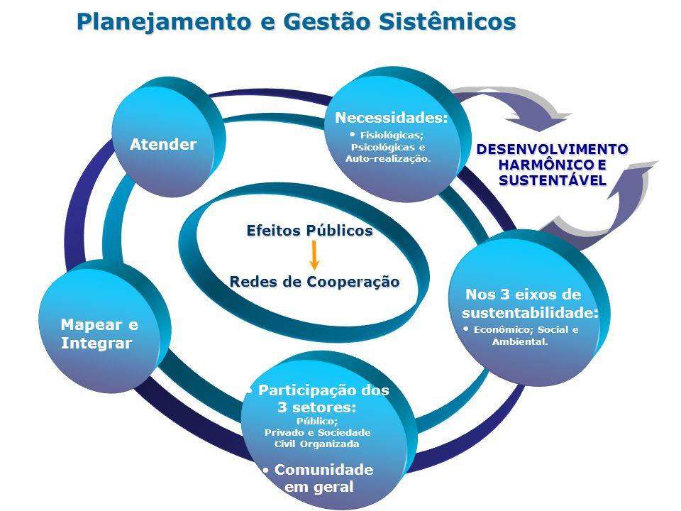 Planejamento e Gestão Sistêmicos