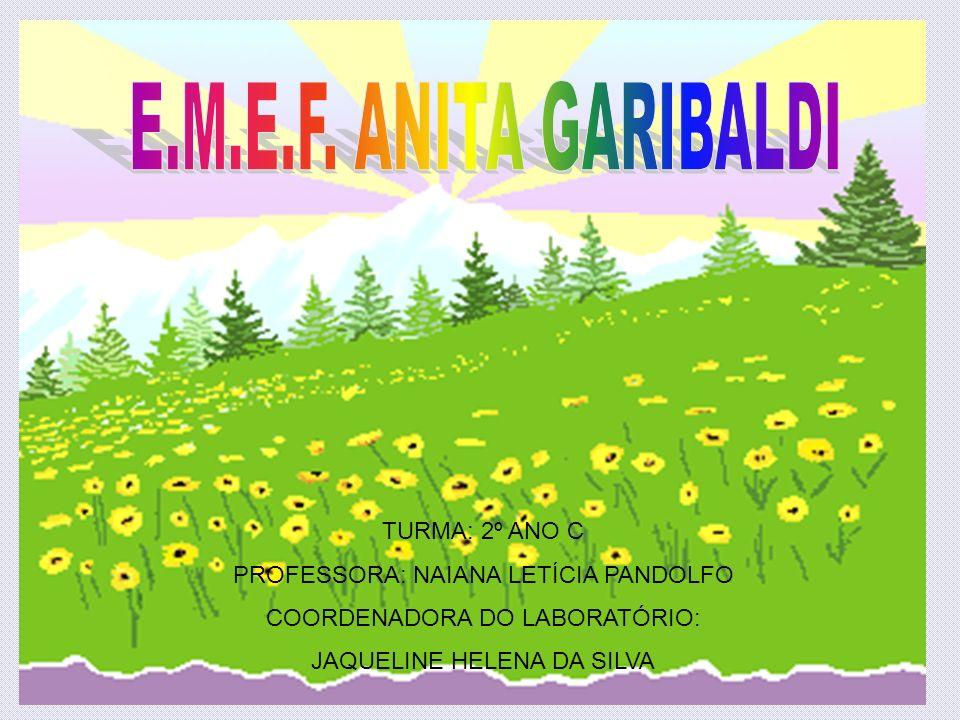 E.M.E.F. ANITA GARIBALDI TURMA: 2º ANO C