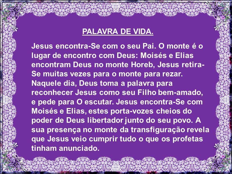 PALAVRA DE VIDA.