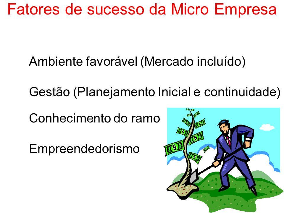 Fatores de sucesso da Micro Empresa