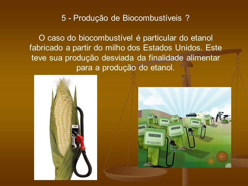 5 - Produção de Biocombustíveis