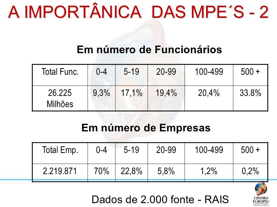 A IMPORTÂNICA DAS MPE´S - 2