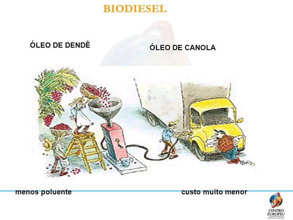 BIODIESEL ÓLEO DE DENDÊ ÓLEO DE CANOLA menos poluente