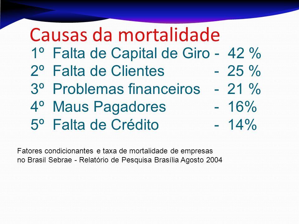 Causas da mortalidade 1º Falta de Capital de Giro - 42 %