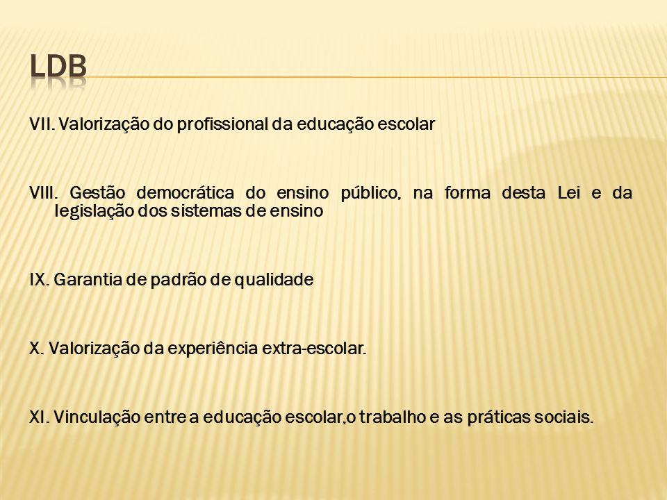 LDB VII. Valorização do profissional da educação escolar