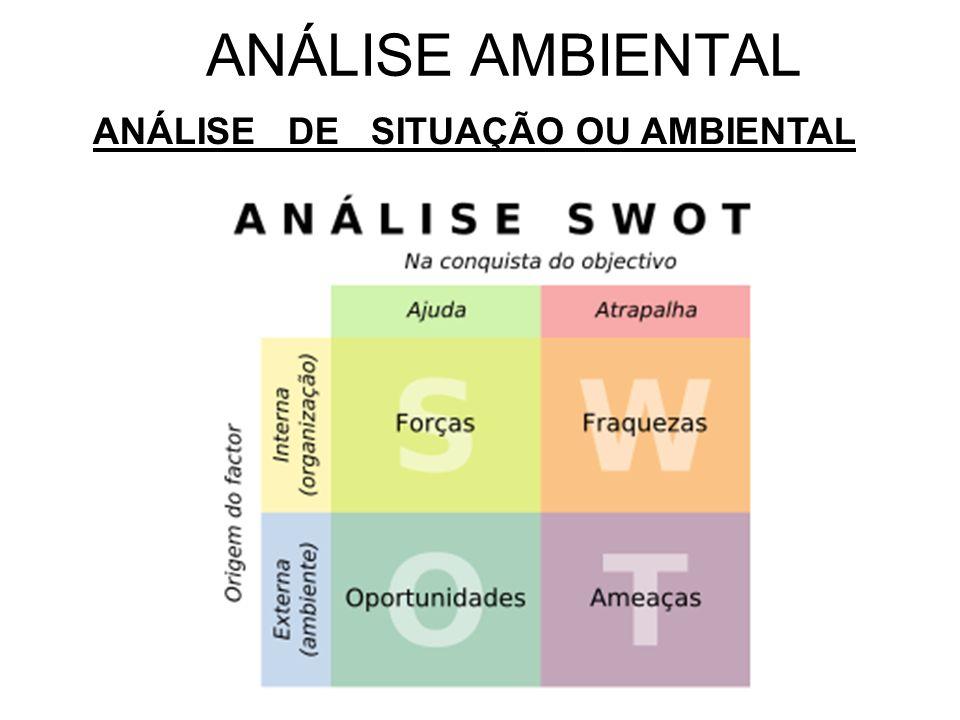 ANÁLISE DE SITUAÇÃO OU AMBIENTAL